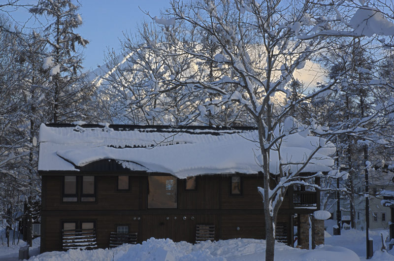 Shika Outdoor Area with Snow and Trees | East Hirafu