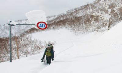 Niseko Ski Tours