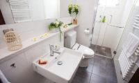 Tamo En-Suite Bathroom | Middle Hirafu