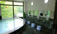 Aria Hotel Public Onsen | Lower Wadano