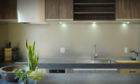 Phoenix Cocoon Kitchen | Lower Wadano