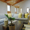 Phoenix Cocoon Living Area | Lower Wadano
