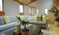 Phoenix Cocoon Living Area | Lower Wadano