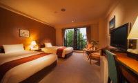 Hakuba Springs Hotel Deluxe Twin Room with TV   Happo Village