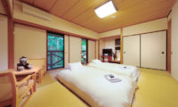 Phoenix Hotel Superior Room with TV | Lower Wadano