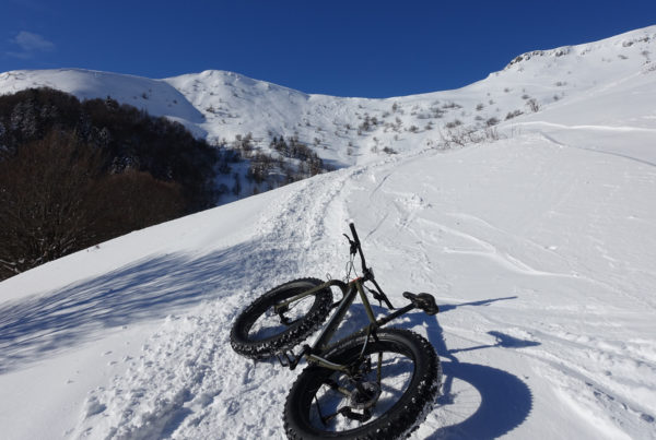 Niseko Explore Niseko Ginto Activities - Segway, Snow Bike