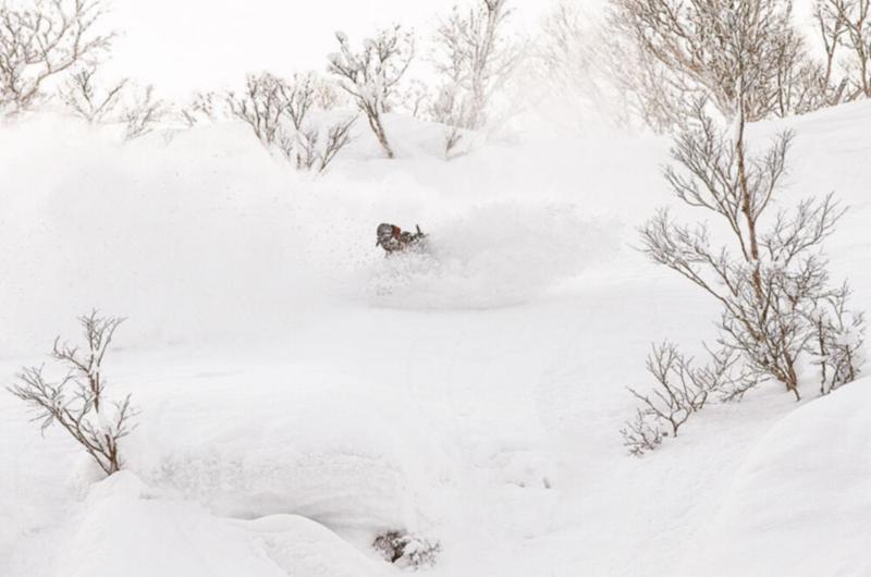 Niseko Chisenupuri Cat Skiing Backcountry House of Powder