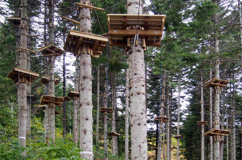 Niseko Hirafu NAC High Ropes Course