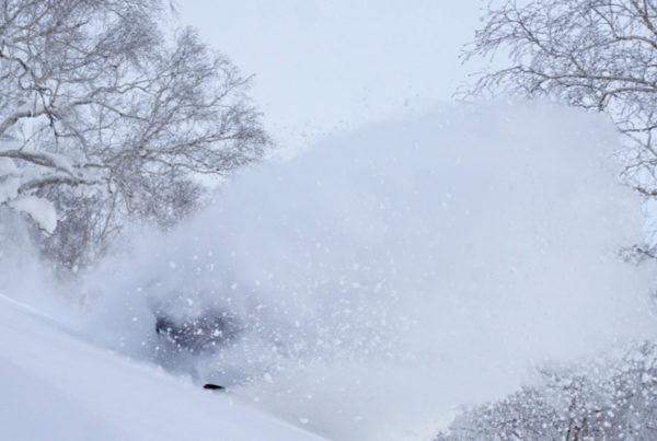 Powderlife Niseko Snow Report 20170120