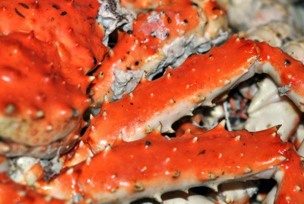 Niseko Oishii Hokkaido Seafood Fair 01 2000