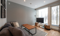 Roku Lounge Room with TV | West Hirafu