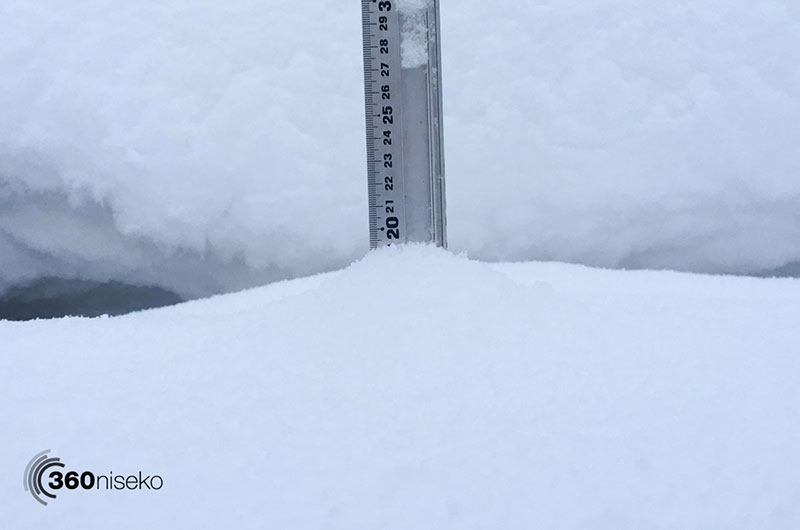 This is Niseko's powder snow!!