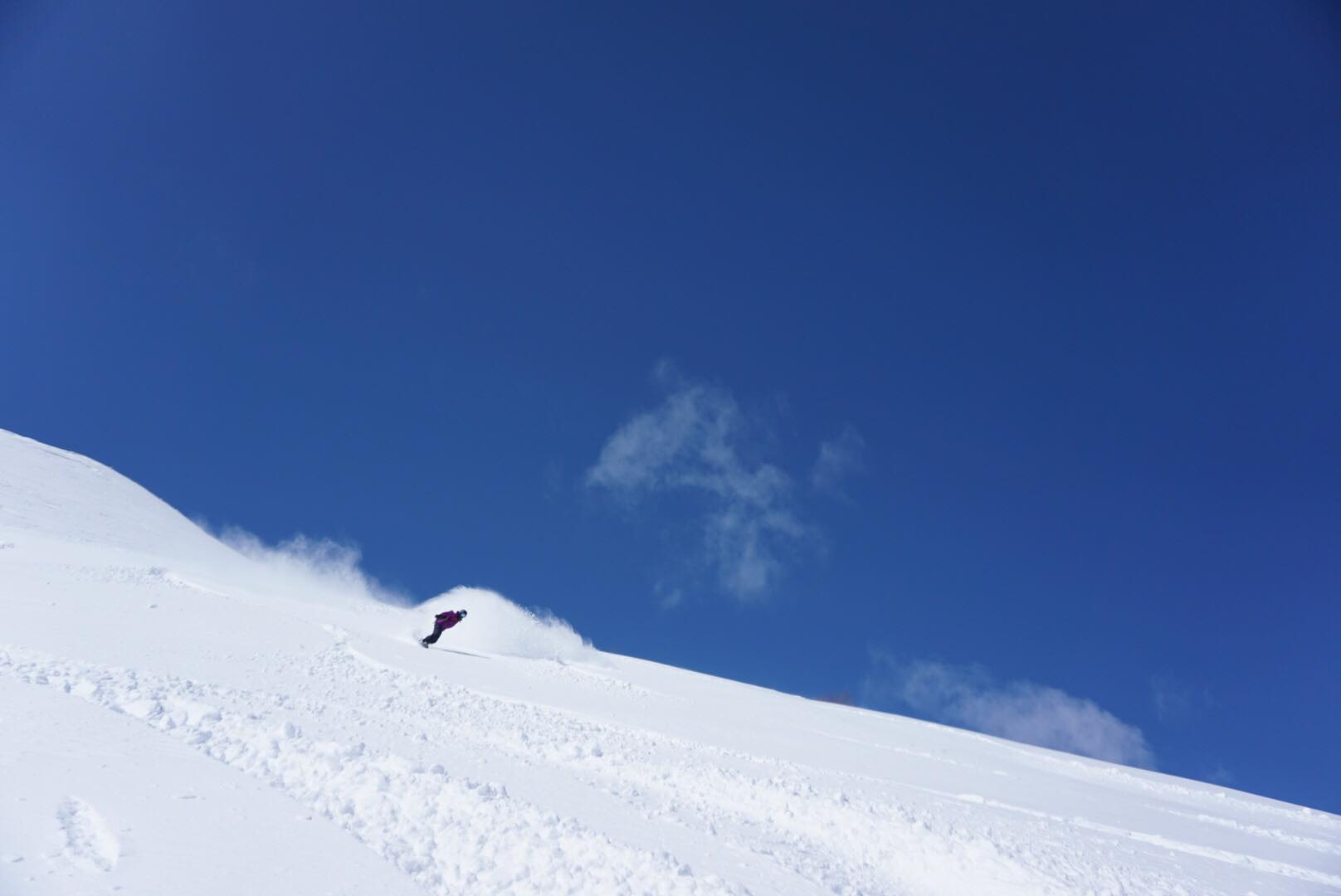 Niseko powder in April… the new Japarch!