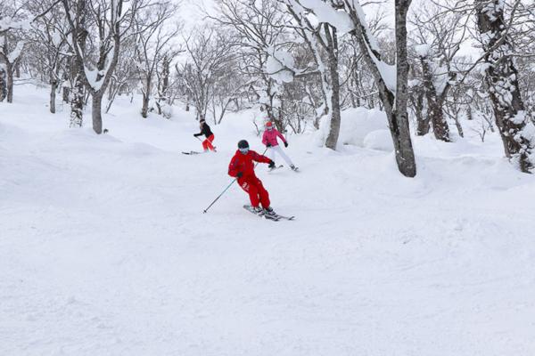 niseko-ski-lessons-wearesnow-15
