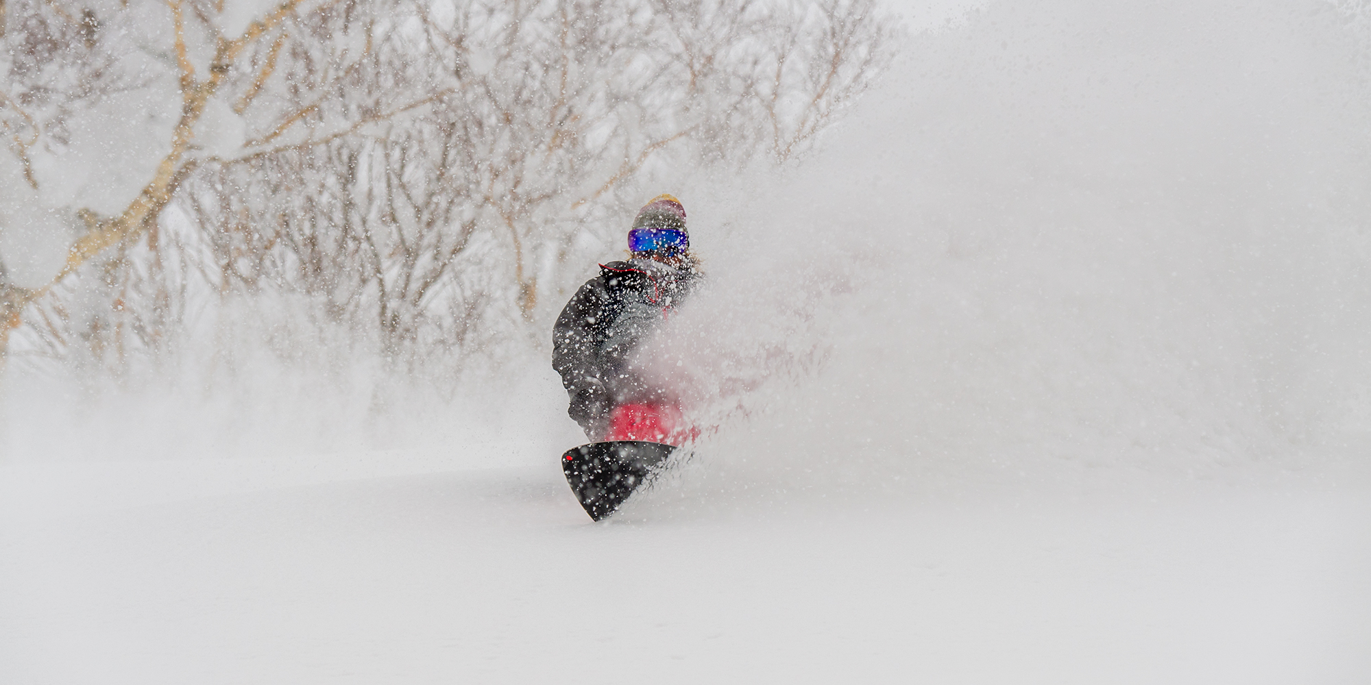 Taking snowsurfing to the world