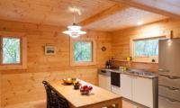 Villa Antelope Hakuba Kitchen and Dining Area | Echoland